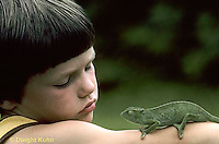 CH26-001z  African Chameleon - child watching chameleon crawling on arm - Chameleo senegalensis