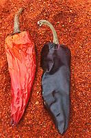Europe/France/Aquitaine/64/Pyrénées-Atlantiques/Pays Basque/Espelette: Piment d'Espelette à l'Atelier du Piment chez Ramuntxo Pochelu producteur - Piment et Poudre de Piment