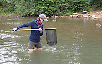 NWA Democrat-Gazette/FLIP PUTTHOFF <br /> Sharon Curry sees what she's caught in her net Sept. 10 2016.