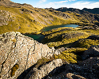 Alpine tarns, Nelson Lake National Park, South Island, New Zealand, NZ
