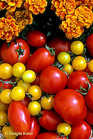 HS09-046c  Tomato - gold nugget, celebrity, LaRossa, early cascade varieties