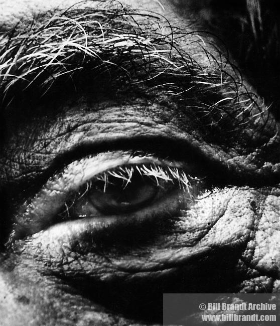 Alberto Giacometti eye