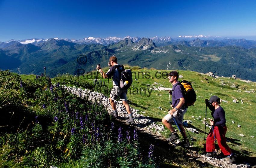 Austria, Styria, view from Reiteralm Panorama Trail towards Austrian Alps, hikers