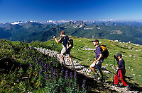 Austria, Styria, view from Reiteralm Panorama Trail towards Austrian Alps, hikers