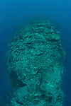 Healthy reef with steep drop-offs