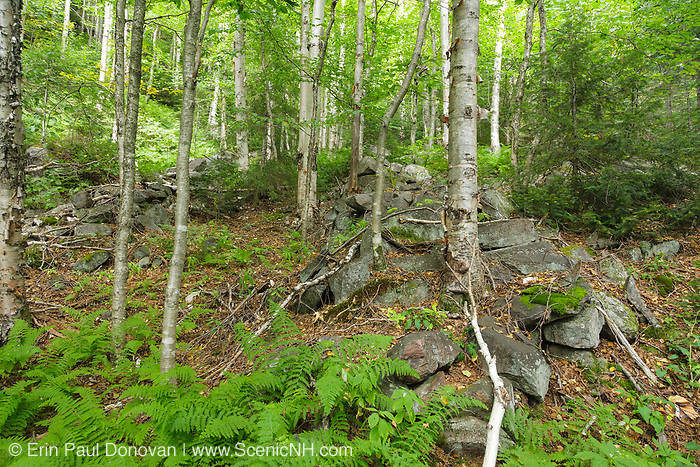 Possibly the remnants of a logging sluice, from the East Branch & Lincoln Railroad, on Southwest Twin Mountain (Redrock Ravine) in the Pemigewasset Wilderness of New Hampshire. The East Branch & Lincoln Railroad was a logging railroad in operation from 1893-1948.