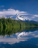 ORCAN_043 - USA, Oregon, Mount Hood National Forest, Northwest side of Mount Hood and conifer forest reflect on calm surface of Lost Lake.