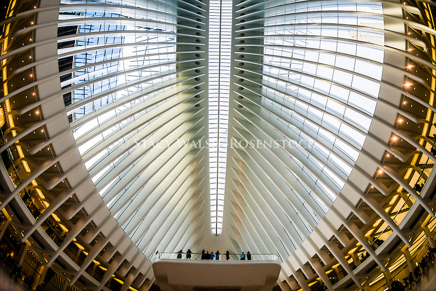 New York, NY Oculus transportation Hub at the World Trade Center,  completed in 2016, serves 250,000 Port Authority Trans-Hudson (PATH) daily commuters and millions of annual visitors from around the world. At approximately 800,000 square feet, the Hub, was designed by architect Santiago Calatrava, is the third largest transportation center in New York City.<br /> <br /> The World Trade Center Transportation Hub's concourse will ultimately connect visitors to 11 different subway lines; the PATH rail system; the Battery Park City Ferry Terminal; the National September 11 Memorial &amp; Museum; World Trade Center Towers 1, 2, 3, and 4; and Brookfield Place (formerly known as the World Financial Center), which houses the Winter Garden.