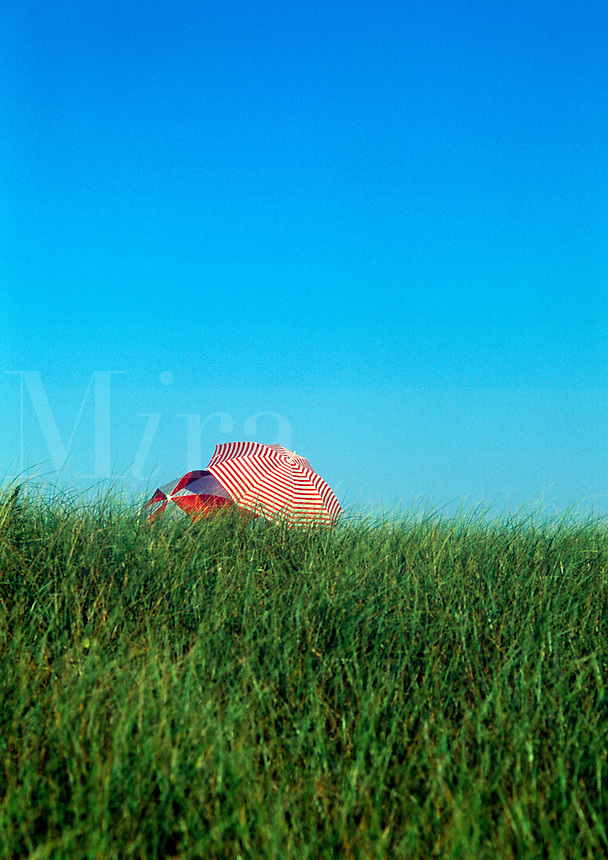 Intimate beach umbrellas, dune grass and sky, Cape Cod National Seashore