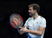 Gregor Dimitrov of Bulgaria (6) celebrates his victory over Dominic Thiem of Austria (4) in the Group Pete Sampras Match today - Dimitrov def Thiem 6-3, 5-7, 7-5<br /> <br /> Photographer Ashley Western/CameraSport<br /> <br /> International Tennis - Nitto ATP World Tour Finals - O2 Arena - London - Day 2  - Monday 13th November 2017<br /> <br /> World Copyright &not;&copy; 2017 CameraSport. All rights reserved. 43 Linden Ave. Countesthorpe. Leicester. England. LE8 5PG - Tel: +44 (0) 116 277 4147 - admin@camerasport.com - www.camerasport.com