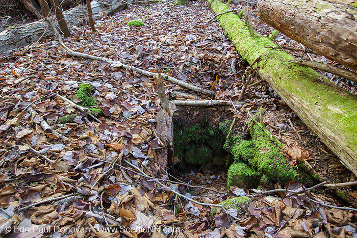 Remnants of possibly a dug well at the abandoned Peeling settlement (Mt. Cilley Settlement) in Woodstock, New Hampshire. Peeling was the original settlement of Woodstock, and this village was abandoned by the 1860s.