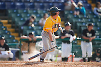 Siena Saints shortstop Rich Gilbride (5) at bat during a game against the Pittsburgh Panthers on February 24, 2017 at Historic Dodgertown in Vero Beach, Florida.  Pittsburgh defeated Siena 8-2.  (Mike Janes/Four Seam Images)