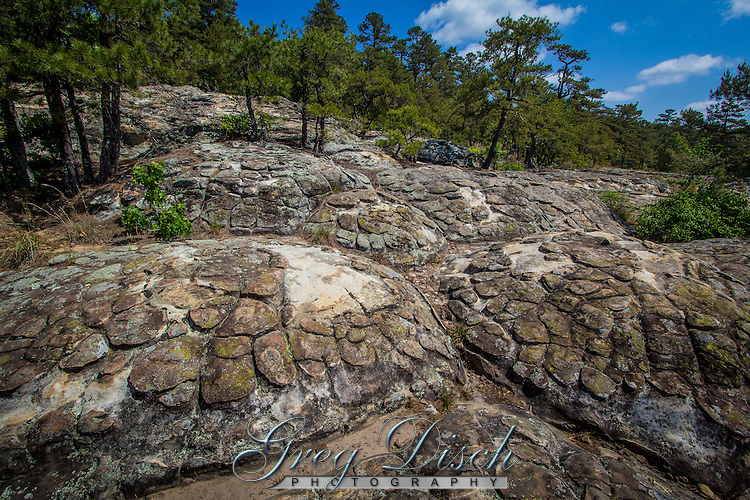 Turtle Rocks are some of the most unique in Petit Jean State Park near Morrilton Arkansas.<br /> <br /> Mounded polygonal structures resembling a turtle shell were carved in thick sandstones of the Hartshorne Sandstone.