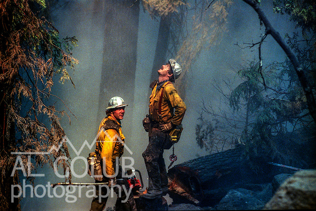 August 15, 1990 Yosemite National Park  --  A-Rock (Arch Rock) Fire  -- Brothers Austin and Rich Meinert fell a tree in Crane Flat Campground Yosemite National Park. The Arch Rock Fire burned over 16,000 acres of Yosemite National Park and the Stanislaus National Forest.  At the same time across the Merced River, the Steamboat Fire burned over 5,000 acres of both Yosemite National Park and the Sierra National Forest.