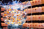 """September 8th, 2011: Tokyo, Japan - A display of a designer fish tank in the """"Art Aquarium"""" exhibition held at Nihonbashi Mitsui Hall in Tokyo, Japan. There are over 1,000 of golden fish on display with colorful lights and uniquely shaped of tanks. Traditionally the goldfish is a common Japanese pet but they are rarely seen in such luxurious surroundings. The exhibition runs until Sunday 12th September and is open at night too as a bar."""