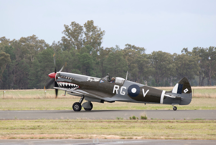 Supermarine Spitfire Mk.VIII, Grey Nurse, on display at the Temora Air Museum on a rainy day, Temora Australia