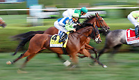 Hawksmoor first time by as Quidura (no. 5) wins the Woodford Reserve Ballston Spa Stakes (Grade 2), Aug. 25, 2018 at the Saratoga Race Course, Saratoga Springs, NY.  Ridden by  Jose Ortiz, and trained by Chad Brown, Quidura finished 1 3/4 lengths in front of Hawksmoor (No. 4).  (Bruce Dudek/Eclipse Sportswire)