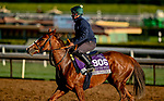 October 30, 2019: Breeders' Cup Juvenile Turf Sprint entrant Band Practice, trained by Archie Watson, exercises in preparation for the Breeders' Cup World Championships at Santa Anita Park in Arcadia, California on October 30, 2019. Scott Serio/Eclipse Sportswire/Breeders' Cup/CSM