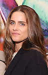 Amanda Peet attends the press reception for the Opening Night of the Lincoln Center Theater Production of 'The Babylon Line'  at the Mitzi E. Newhouse Theatre on December 5, 2016 in New York City.
