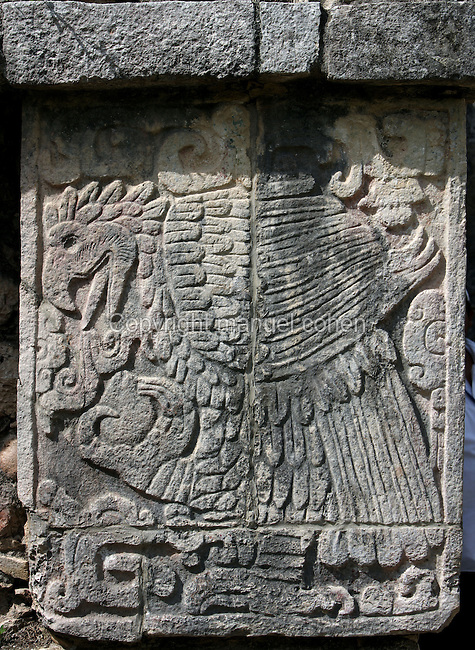 Relief of the Eagle holding the heart of the initiate, Temple of the Eagles and the jaguars, square platform with a staircase on each side, Toltec architecture, 1100-1300 A.D., Chichen Itza, Yucatan, Mexico. Picture by Manuel Cohen