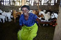 TANZANIA Region Mara, Musoma, village Borenga, Kuria tribe, women breed goat for income generation / TANSANIA Region Mara, Musoma, Dorf Borenga, Kuria Ethnie, Frauen halten Ziegen zur Einkommensfoerderung