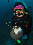 Orchid Island, Taiwan -- Taiwanese diver holding and squeezing a pufferfish until it puffs itself up into a balloon shape.<br /> <br /> I wish local divers would show more respect for the marine life!<br /> <br /> This particular diver grabbed the puffer and maltreated it just so that her dive buddy (not seen in the photo) could take a picture!<br /> I find this kind of behavior despicable.