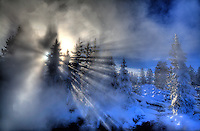 The sun bursts through the steam and pine trees at the West Thumb Geyser Basin at Yellowstone National Park, Wyoming.