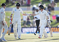 23rd November 2019; Mt Maunganui, New Zealand;  Mitchell Santner and BJ Watling at the end of play on Day 3, 1st Test match between New Zealand versus England. International Cricket at Bay Oval, Mt Maunganui, New Zealand.  - Editorial Use
