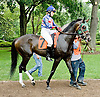 Gogolego before The International Ladies Fegentri race at Delaware Park on 6/11/12