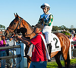 February 8, 2020: Sole Volante, ridden by Luca Panici, wins the 2020 running of the G3 Sam F. Davis Stakes at Tampa Bay Downs in Oldsmar, FL. Sophie Shore/ESW/CSM