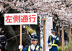 Security officials use loudspeakers and  signs to keep sightseers along the left side at one of Japan's most famous cherry blossom viewing sites in Tokyo, Japan on 31 March, 2010.