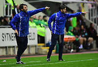 Lincoln City manager Danny Cowley, left, and Lincoln City's assistant manager Nicky Cowley shout instructions to their team from the technical area<br /> <br /> Photographer Chris Vaughan/CameraSport<br /> <br /> The Carabao Cup First Round - Rotherham United v Lincoln City - Tuesday 8th August 2017 - New York Stadium - Rotherham<br />  <br /> World Copyright &copy; 2017 CameraSport. All rights reserved. 43 Linden Ave. Countesthorpe. Leicester. England. LE8 5PG - Tel: +44 (0) 116 277 4147 - admin@camerasport.com - www.camerasport.com