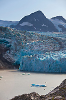 Tourists kayak amongst icebergs in Nellie Juan Lagoon, Nellie Juan Glacier, Chugach National Forest, Kenai Peninsula, Prince William Sound, southcentral, Alaska.