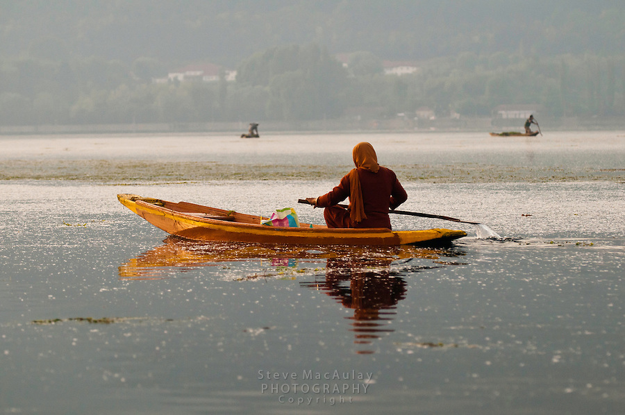 Woman paddling a traditional Kashmiri shikara, or gondola, Dal Lake, Srinagar, Kashmir, india..