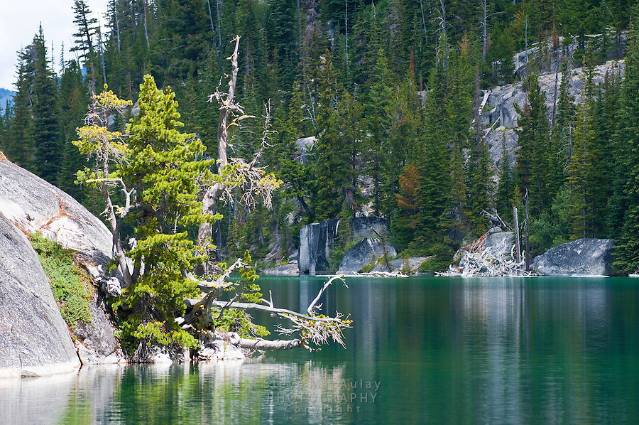 Scenic view of trees reflected in the water of Colchuck Lake, Alpine Lakes Wilderness, WA.