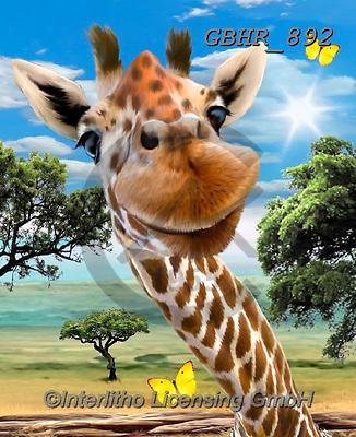 Howard, SELFIES, paintings+++++,GBHR892,#Selfies#, EVERYDAY,giraffe