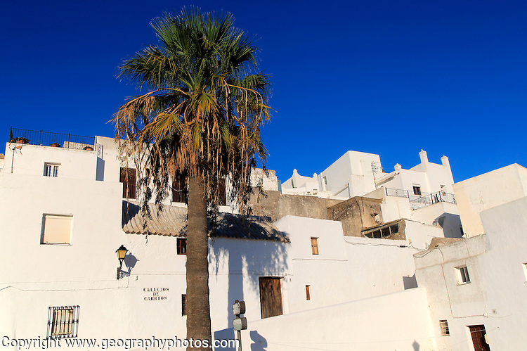 Pueblo blanco historic village whitewashed houses , Vejer de la Frontera, Cadiz Province, Spain