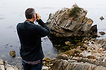 Sea Otter (Enhydra lutris) researcher Karl Mayer looking at stranded otter to see if it needs rescuing, Monterey, Monterey Bay, California