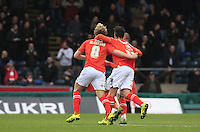 Cameron McGeehan of Luton Town (number 8) celebrates his winning goal during the Sky Bet League 2 match between Wycombe Wanderers and Luton Town at Adams Park, High Wycombe, England on 6 February 2016. Photo by Liam Smith.