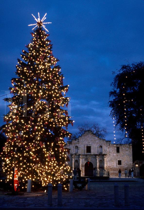 . Christmas tree at the Alomo.