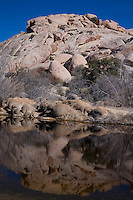 Vertical view of a rock fromation reflected in Barker Dam in Joshua Tree National Park.