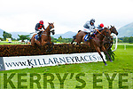 Winner Peregrine Run (black and Red) ridden by R Loughnane jumps the last before sprinting past Conrad Hastings ridden by Davy russell to win the Clifford Ground Care Ltd Novice Steeplechase at Killarney Races on Saturday