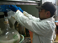 A worker prepares a drug similar to MDPV at a laboratory belonging to CEC Limited, a company which exports the legal high to Great Britain, Pudong, Shanghai, China, 08 April 2010.