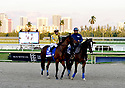 HALLANDALE BEACH, FL - JANUARY 25: Atmosphere during the 2020 Pegasus World Cup Championship Invitational Series at Gulfstream Park - David Grutman's LIV Stretch Village on January 25, 2020 in Hallandale Beach, Florida.  ( Photo by Johnny Louis / jlnphotography.com )