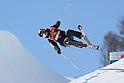 FIS Freestyle Ski World Cup 2017