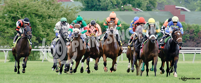 Samiam winning at Delaware Park on 7/21/14