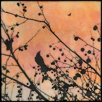 Mixed media encaustic painting with photography of birds in branches and orange sky