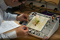 Teaching Assistant Henrique Miller helps students as they practice building a master-slave circuit on a breadboard during the lab for Computer Hardware Concepts (CSCE A241) in UAA's Engineering and Industry Building (EIB) Electrical Engineering Lab. Breadboards allow students to quickly build and test circuits without the need to solder or permanantly alter components.