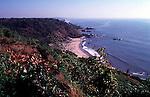 Arambol beach in Goa.