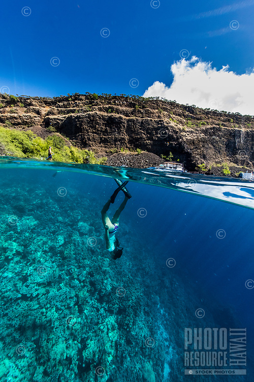 A woman snorkels along the reef near the Captain Cook monument, Kealakekua Bay, Big Island.